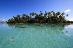 motu tau tau, tahaa island. (mathetdjam) Tags: ocean sea reflection water island pacific lagoon palmtrees tahiti pure cristal motu bora tahaa tautau