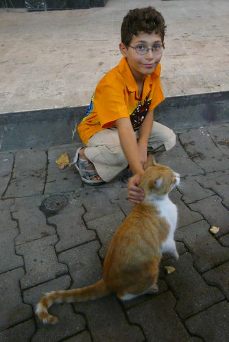 a boy and a cat