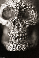 The Skull of Indefinite Power (T. Scott Carlisle) Tags: macro art skull high iron teeth iso tiny tsc sloss 25600 tphotographic tphotographiccom tscarlisle tscottcarlisle