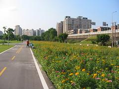 河濱公園單車道