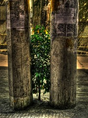 between two post (hdr) (SaDDuL) Tags: street philippines surreal manila hdr pinoyhdr