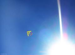 DSCN0550 (Para que quiero pies, si tengo alas para volar.) Tags: libertad