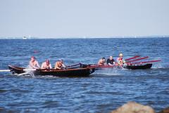 Irish Rowers 73131