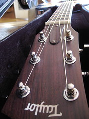 My New Taylor! - 137/365