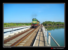 Taking me for a ride (| JERRY |) Tags: india joseph jerry kerala southindia keralam southernrailway railbridge calicut kozhikode kadalundi jerryclicks jerryphotography calicutflickr kozhikodeflickr takingmeforaride kadalundirailbridge southernindianrailway wwwjerrysworldin
