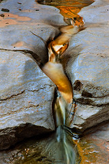 Stream of Gold (Suzanne AZICIT) Tags: arizona sports river grandcanyon photographers rafting coloradoriver occupations garyladd photocontesttnc08