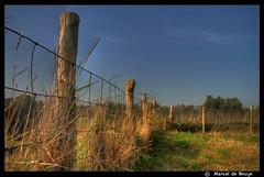 Fort Rammekens (M-Mick3y) Tags: blue sky holland green castle yellow wire fort air gras lucht middelburg hdr vlissingen flushing palen rammekens fortrammekens