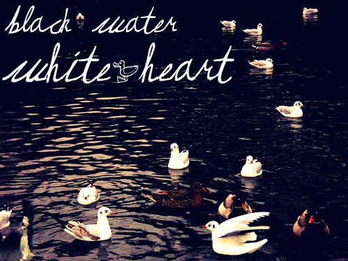 Cristallized Odissea · Claddagh Vote · Black Water White Heart