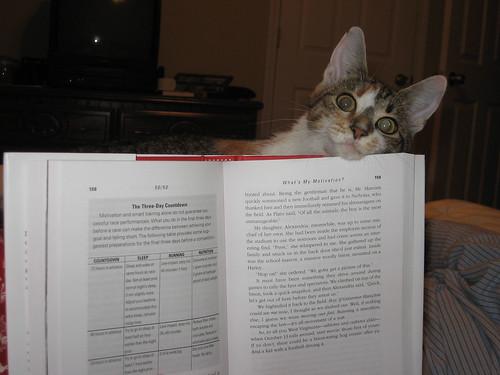 callie reading