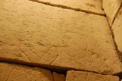 tomb walls (Christina Saull) Tags: chicago illinois sandstone drawing fieldmuseum hieroglyphics