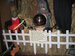 以弗所人万圣节在Flickr上由ccontill在林木中建立