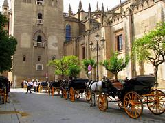Sevilla (Graça Vargas) Tags: españa sevilla spain cathedral coches lagiralda ph227 graçavargas ©2008graçavargasallrightsreserved 6104190109