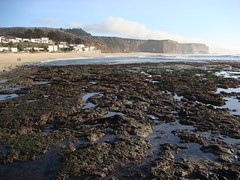 MartinsBeach_2007-070 (Martins Beach, California, United States) Photo