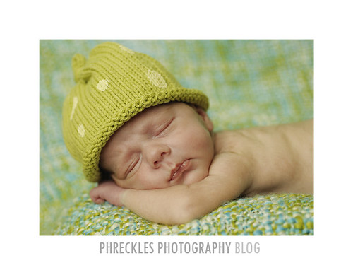 raleigh baby photography