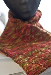 Sunray2 (shortnfit) Tags: scarf sunray neckwarmer malabrigo