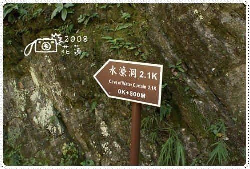 白楊步道 (2)