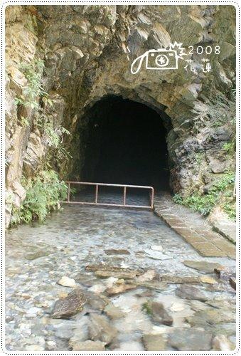 白楊步道 (11)