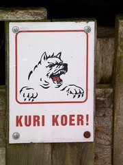 Kuri Koer! (tm-tm) Tags: dog sign europe tallinn estonia beware signage eesti