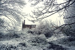 The House in the Snow (Gilderic Photography) Tags: wood winter white house snow cold tree nature forest landscape lumix europe belgium belgique path branches chartreuse panasonic explore neige maison liege arbre blanc froid sentier chemin bois givre wallonie pansonic gilderic superaplus aplusphoto theunforgettablepictures oblats dmctz4 grivegnee bestcapturesaoi
