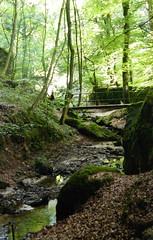 La petite Suisse (KarolusLinus) Tags: bridge trees vacation water walking vakantie bomen rocks wandelen walk brug luxemburg rotsen kleinzwitserland beekje lapetitesuisse