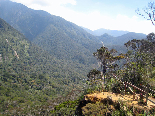Mesilau trail vista