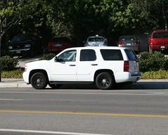 Chevy Tahoe PPV Police Package (Have Fun SVO) Tags: ca white chevrolet truck la tahoe police chevy law enforcement fleet suv blackrims ppv woodlandhills carspotting blackwheels 1fl policepackage