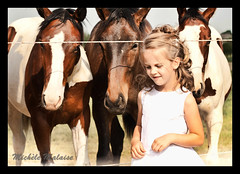 three on a row (froefroe) Tags: horses girl michelle paarden communie kruishoutem