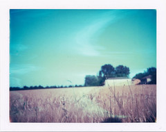 (Ilaria ) Tags: polaroid669 colorpackii