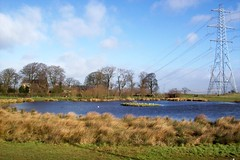 Pylon pond (DrSlippers2007) Tags: england green english nature water rural countryside duck pond pylon freshwater