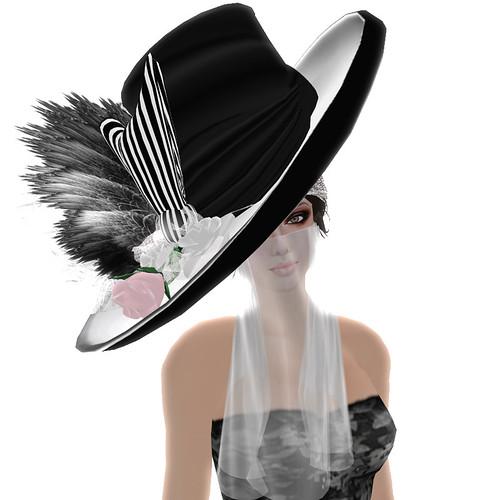 -~-Illusions-~-Hat