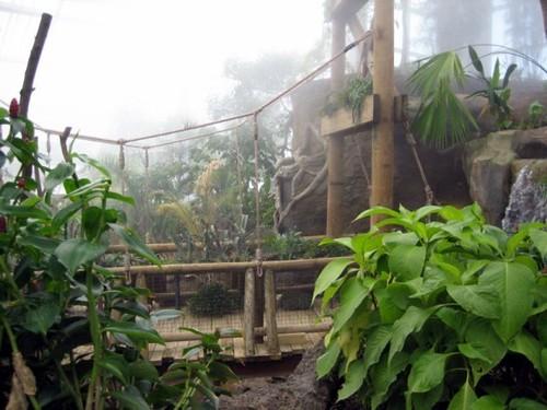 Amazonia at Evansvilles Mesker Park Zoo