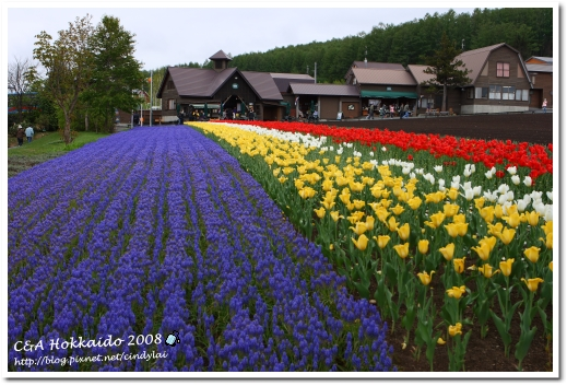Hokkaido_0529