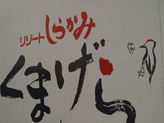 shirakami (4)