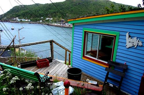Pretty Newfoundland.