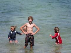 july-2008 070 (mtdonahue) Tags: summer maine july goslings 2008 applewine