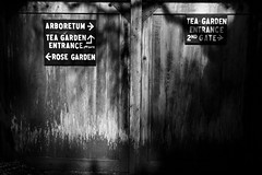 Which Way Should I Go? (mmmkqqq) Tags: sanfrancisco park blackandwhite signs rose garden way japanese golden back gate san francisco shadows tea go entrance molly should which quist i