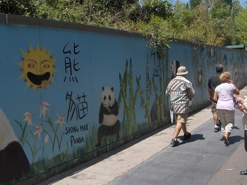 At night the pandas create colorful graffiti