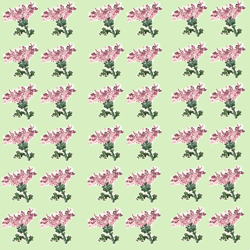 Little pink floral 2