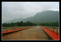 newly built bridge on a rainy day (L i j o J o s e) Tags: trip travel rain kerala explore mazha athirappilly puzha athirappillyhoe