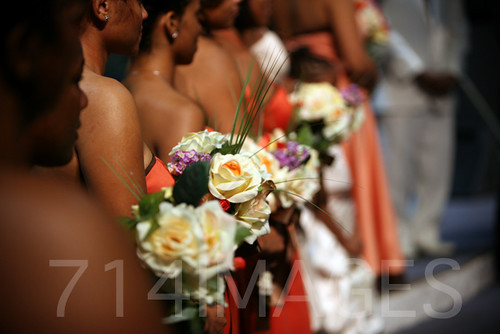 Hamilton Wedding 3