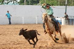 Prova do Lao (Robson Borges) Tags: brazil brasil areia arena cavalo esporte tempo corrida prova goinia gois chapu bota lao cavaleiro chicote competio peo esporas botina bezerro equitao hipismo laar derrubar robsonborges