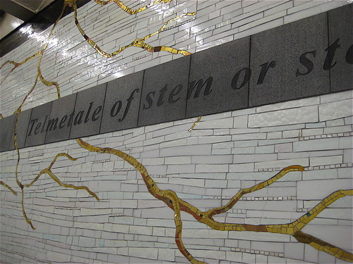 Watery Mosaic - New York Subway