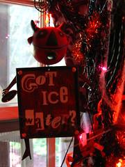 Halloween Tree 2008 008