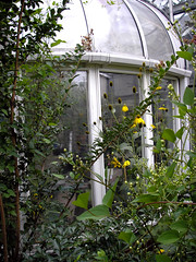 Enchanting Conservatory! 3