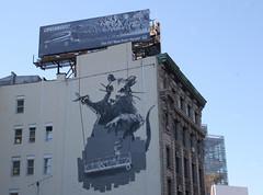 Banksy Buff Bluff (Becki_Fuller) Tags: street nyc urban streetart ny newyork photography graffiti rat mural banksy