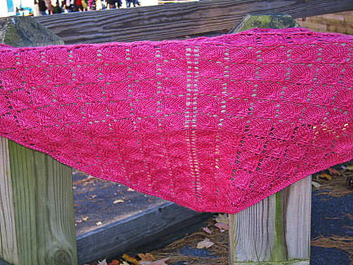 Forest Canopy Shawl
