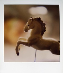 Flying (mad-eye p!e) Tags: sx70 tagged lipizzan 600film hagenrenaker msh1108 msh11088