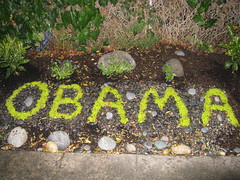 Obama Street Art (seaotter22) Tags: street streetart sign garden berkeley election rocks campaign obama election2008 gardenart berkeleygardening