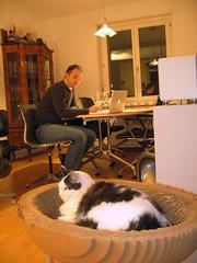 A Chair for Everyone (Christian von Scharpen) Tags: apple cat design cardboard katze eames vitra adhoc scratchingpost kratzbaum kittypod christiangrunert macbook elizabethpaigesmith designpets medachair
