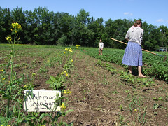 """Sterling Farm • <a style=""""font-size:0.8em;"""" href=""""https://www.flickr.com/photos/7973252@N08/3010251565/"""" target=""""_blank"""">View on Flickr</a>"""